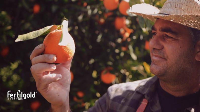 New Fertilgold® Organics Promo Video