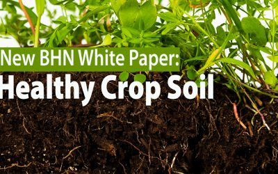 8 Simple Steps to Healthy Crop Soil